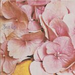 Still Life - Still Life (Limited Edition) 1970 CD под заказ 2-4 недели raritas