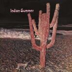 Indian Summer - Indian Summer 1971 CD под заказ 2-4 недели raritas